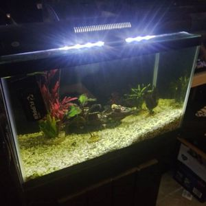 10 Gallons Setup Fish Tank $90 for Sale in Antelope, CA