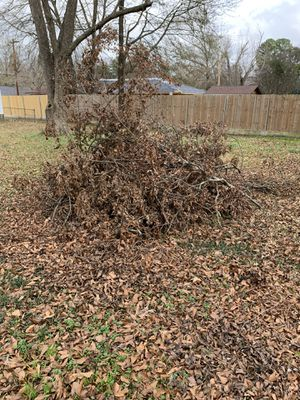 Free wood/ pecan for Sale in Longview, TX