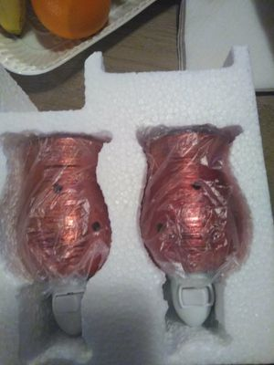 Two wax melters for Sale in Payson, AZ