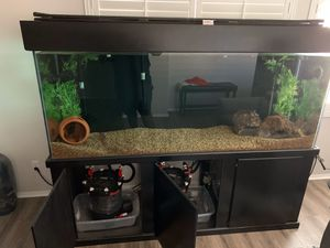 Fish Tank for Sale in Murrieta, CA