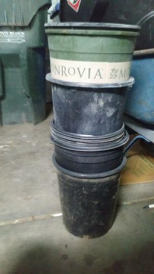 Plastic pots for Sale in Avondale, AZ