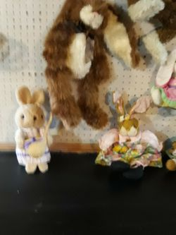 Bunny Rabbits for Sale in Fairmont,  WV