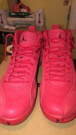 Jordan Retro 12 DeadStock Size 13 for Sale in St. Louis, MO