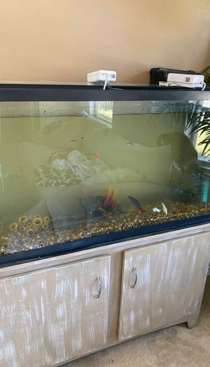 50 gallon setup to inc fish for Sale in Milton, FL