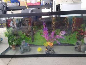 50 gallon fish tank for Sale in Lancaster, CA