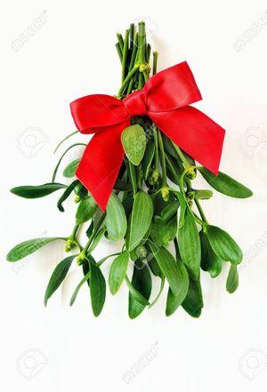 Holiday Mistletoe for Sale in Palmdale, CA