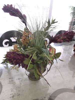 Stunning decoration plant $50 for Sale in Castro Valley, CA