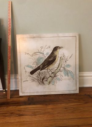 Stretched canvas bird & botanical print for Sale in St. Louis, MO