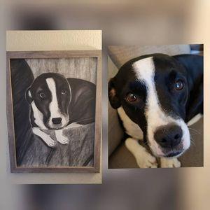 Pet Portraits for Sale in Mesa, AZ