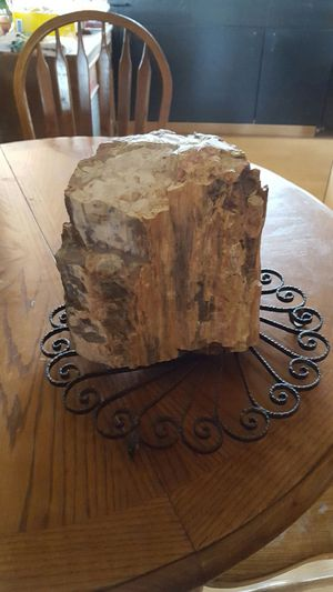Petrified Wood rock large for Sale in Pinetop, AZ