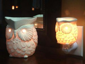 Whoot Scentsy Mini Warmer for Sale in Deer Park, TX