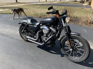 Harley Davidson XL 883 sportster matte black motorcycle for Sale in Plainfield, IL