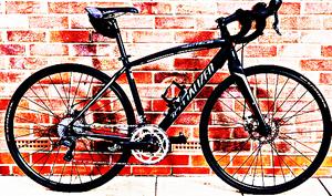 FREE bike sport for Sale in Highgate, VT