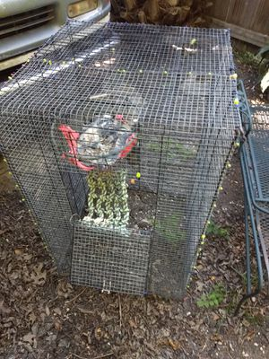 Homemade Ferret Cage for Sale in Pflugerville, TX