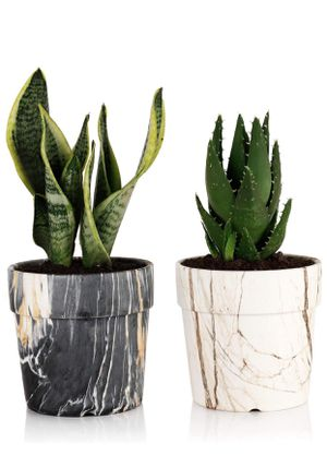 Brand new Marble Plant Pots - 5 Inch Ceramic Planters with Drainage Hole, Round Flower Pots Indoor, Set of 2, Black&White for Sale in Kirkland, WA