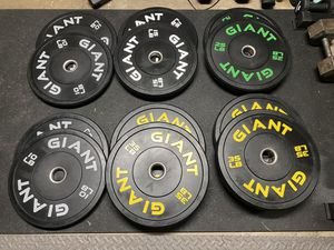 Giant bumper weight plates, PR Cross Training Barbell, Squat rack stand for Sale in Seattle, WA
