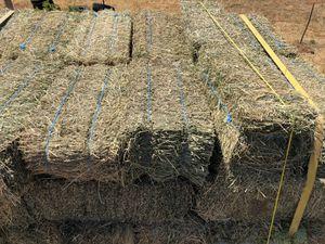 Alfalfa 2 string bales for Sale in Odessa, TX
