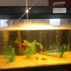 40 Gallon Fish Tank for Sale in Ceres,  CA