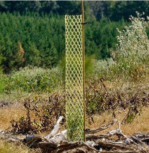 Seedling tube protectors for Sale in Cheyenne, WY