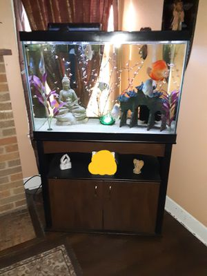 60 gallon tank and Fish for Sale in Houston, TX