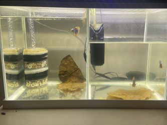 10 Gallon Fish Tank for Sale in Irwindale,  CA
