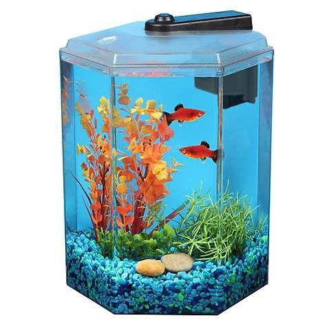 Aquarium 1.7 gallons