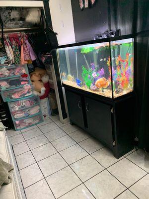 55 gallon Aquarium for Sale in Las Vegas, NV