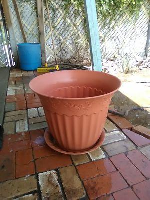 Big plastic flower pot for Sale in ELEVEN MILE, AZ