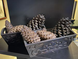 Wood Carved Display Box. And Pine Cones. :) for Sale in Saratoga, CA