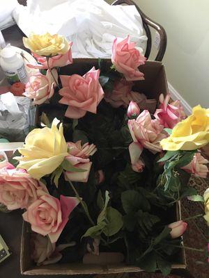 🌹 Roses for Sale in Cincinnati, OH