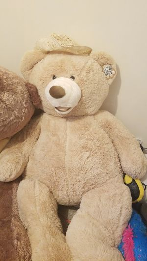 Plush teddy bear for Sale in Dearborn, MI