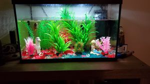 Fish Tank (10 Gallons) for Sale in Apopka, FL