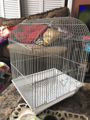 Bird cage for Sale in Revere, MA