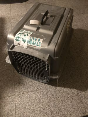 Petmate dog kennel crate airplane cargo for Sale in Malden, MA