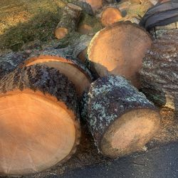 Extra Large Firewood Rounds Large And Small For Projects Or Forewood for Sale in North Bend,  WA