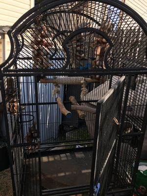 Gorgeous, massive bird cage with accessories inside for Sale in Harrison, NJ