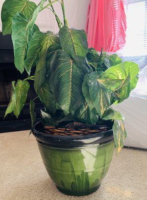 🌸Flower Pot for Sale in Elkridge, MD