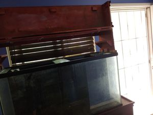 75 gallon fish tank with overflow and Stan for Sale in Cypress, CA
