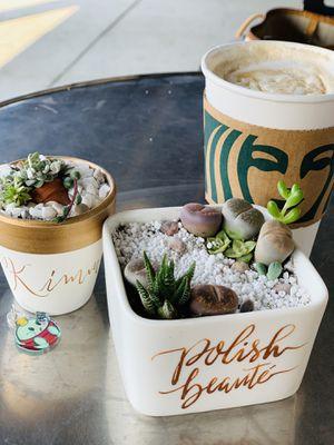succulent arrangement gifts for Sale in Oakland, CA