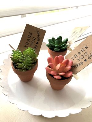 Artificial succulents x 15 u for Sale in Katy, TX