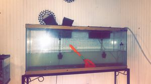 Fish tank for Sale in Bartow, FL