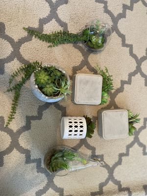 Small faux succulents. $3 a piece! for Sale in Plano, TX