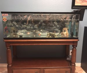 Fish Tank for Sale in Oceanside, CA