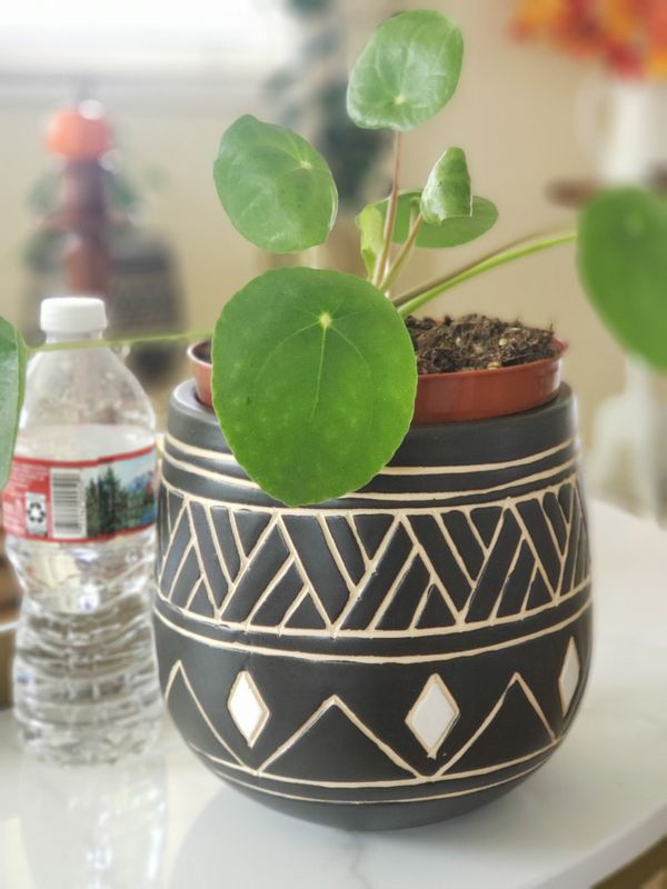 Plant pot boho style