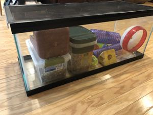 Glass aquarium for small pets -includes wheel, tunnels and food for gerbils for Sale in Lubbock, TX