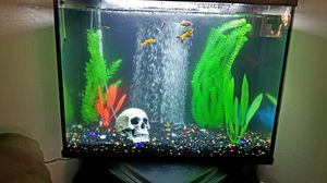 Topfin 39 gallon aquarium for Sale in College Grove, TN