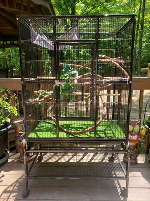 Chameleon / Bird Cage for Sale in Independence, OH