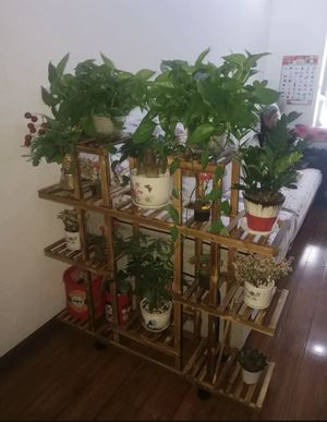 Wood Plant Stand Indoor Outdoor Plant Shelf Multi Tier Flower Pot Holder Shelf Corner Plant Display Shelving Rack for Home Patio Lawn Garden Balcony for Sale in Norwalk, CA