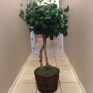 Fake Decorative Plant 4 Foot for Sale in La Verne, CA