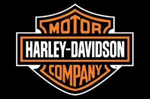 Harley Davidson Winged Cap for Sale in San Diego, CA